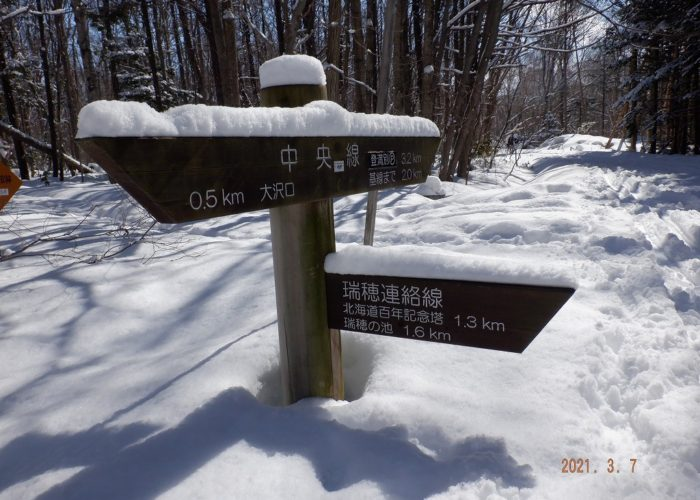 大沢口 → 中央線 → 瑞穂連絡線